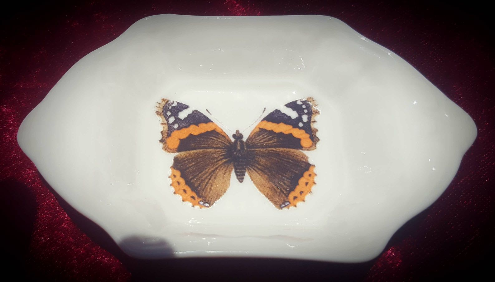 Butterfly tray 13