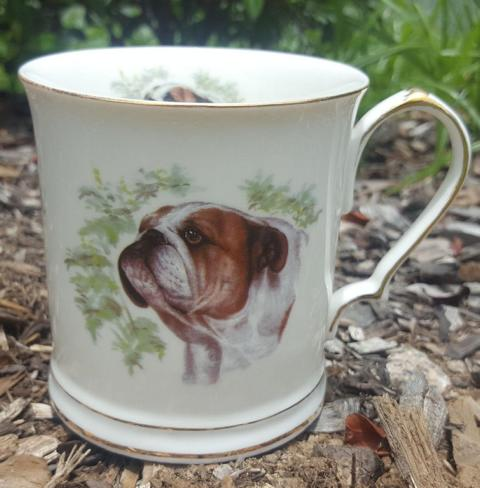 Bulldog Tankard Custom