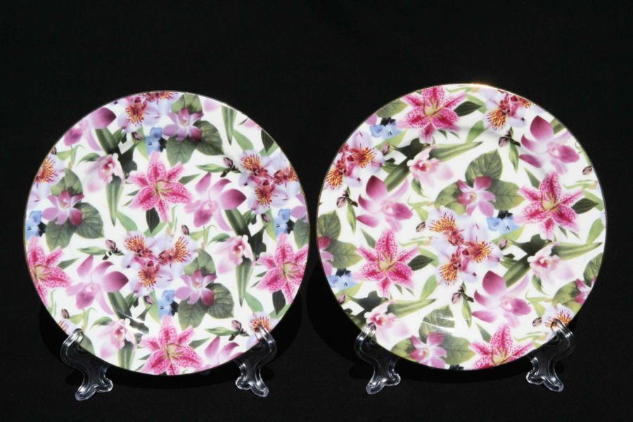 Lily Rainbow 2pc Sideplate Set